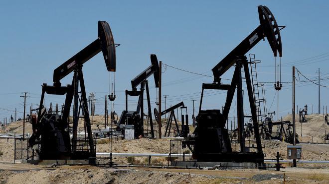 Нефть может подорожать на 18%, неэнергетическое сырье – на 1%, — прогноз-2017